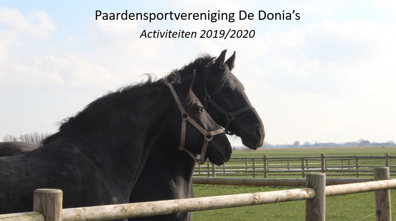 Activiteiten Donia's